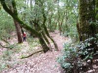 Upper_Stevens_Canyon_County_Park_2.jpg