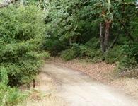 Upper_Stevens_Canyon_County_Park_5.jpg