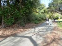 Vasona_Lake_County_Park_Los_Gatos_10.jpg